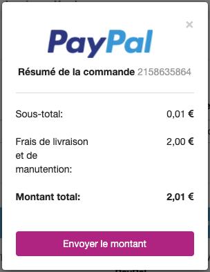 Résumé PayPal
